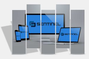 Sentinel IT Apple Service